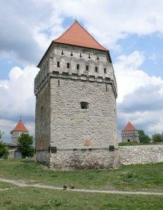 440px-Ukraine.Skalat.Castle01
