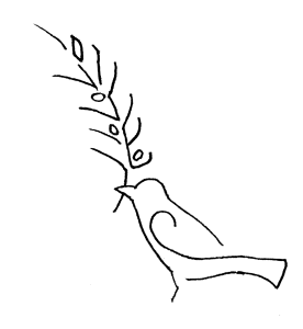 shalom-bird